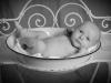 Santina Babyfoto Junge Studio sw Waschschüssel 3 Wochen